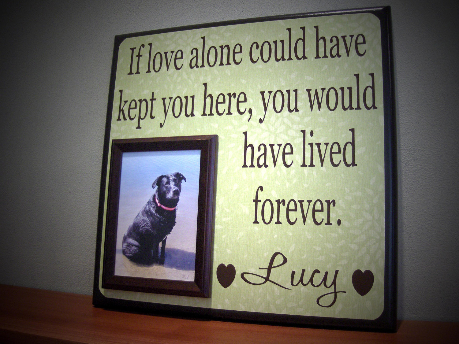 Consider These Things Before Planning A Pet Memorial!